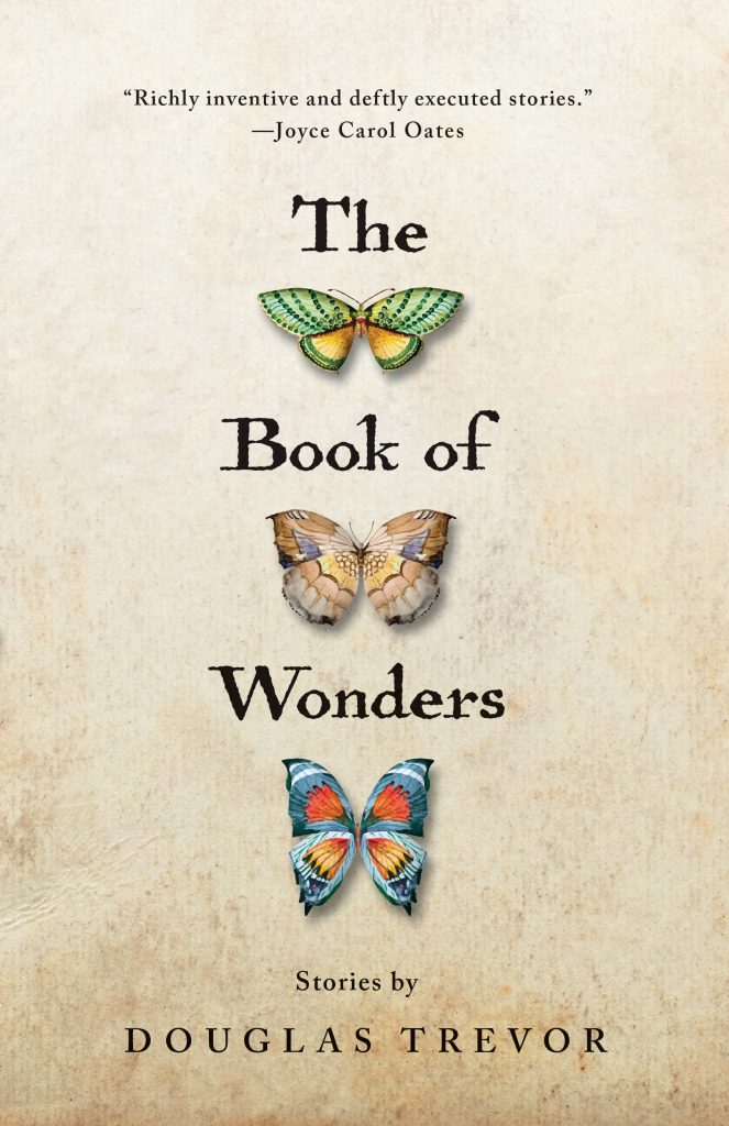 Cover image for The Book of Wonders